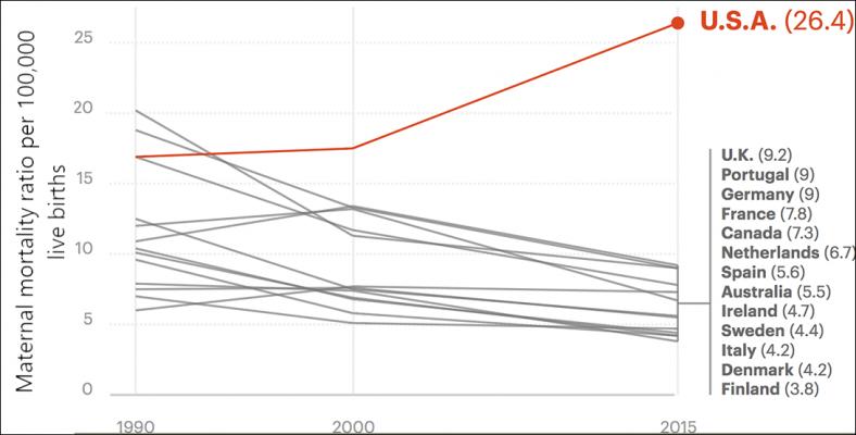 wwdwwd-teri-graph